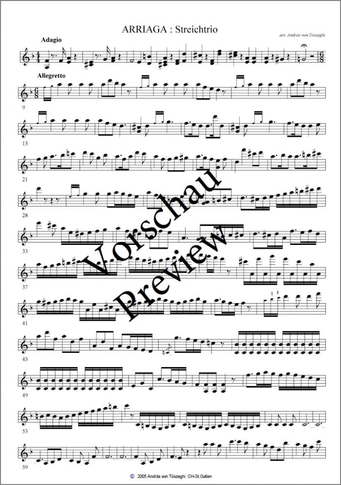 Adagio und Allegretto d-moll, arrangiert für Violine, Bratsche und Violoncello